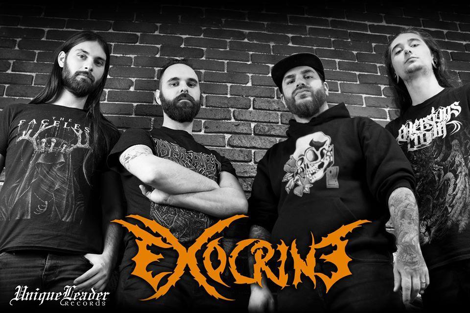 Exocrine 2019