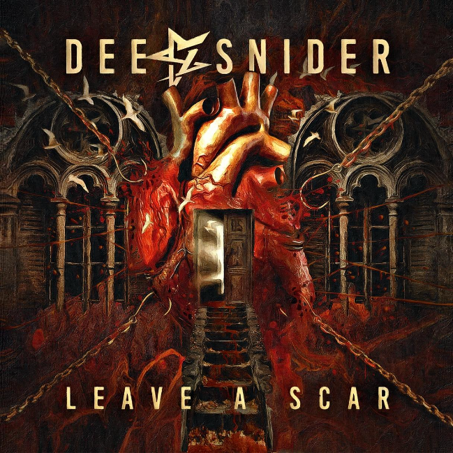 Leave a scar ds
